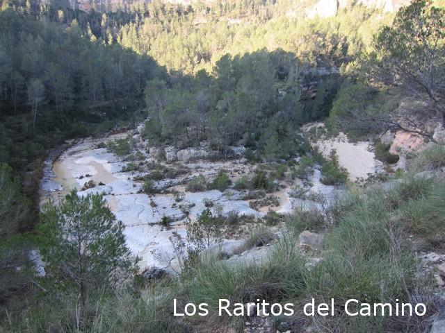 PR-CV 203 – Río Grande – Abrigo de Voro